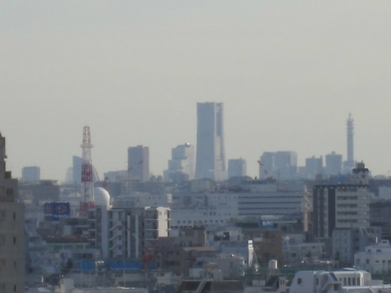 池上本門寺から眺めた横浜ランドマークタワー