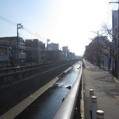 大田区を流れる吞川(のみがわ)