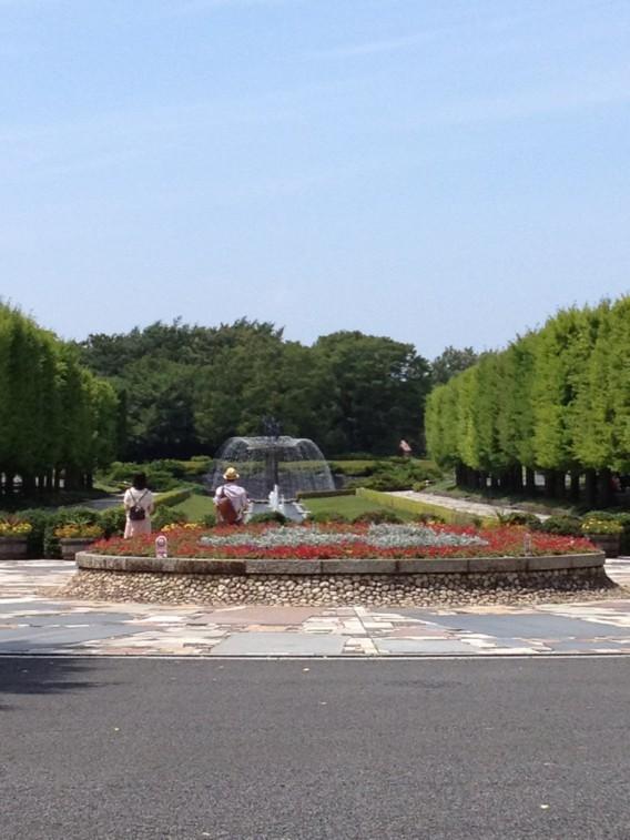 東京の大自然・昭和記念公園