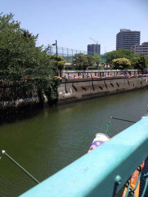 鯉のぼり・呑川を泳ぐ