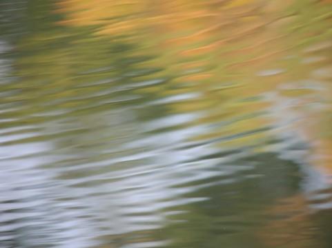 池上、蓮沼・・水の災害は多いのか?