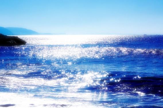 日周リズムがホルモン、そして体温を調節している