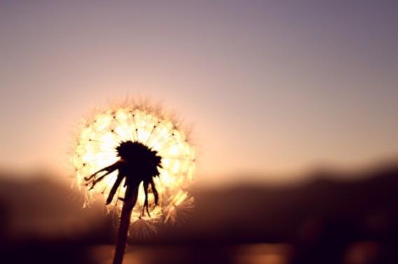 病気が言う「本来のあなたで生きて欲しいから」