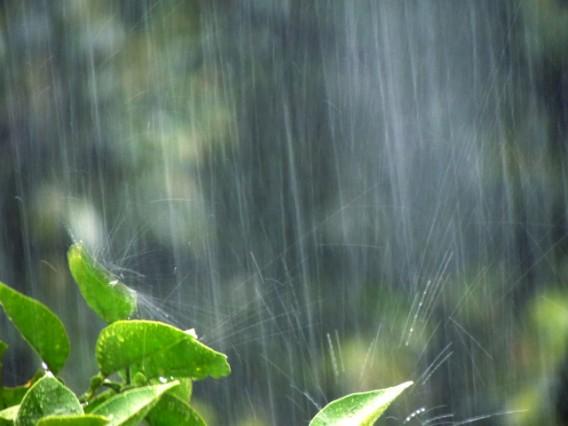 【豊かさ・健康・幸せが来るとき】こんな気づき~大田区池上の整体~